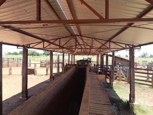 Imagem 1 de 11 de Fazenda Para Venda Em Santa Rita Do Pardo, Rural - Fazgu 315_1-1947859