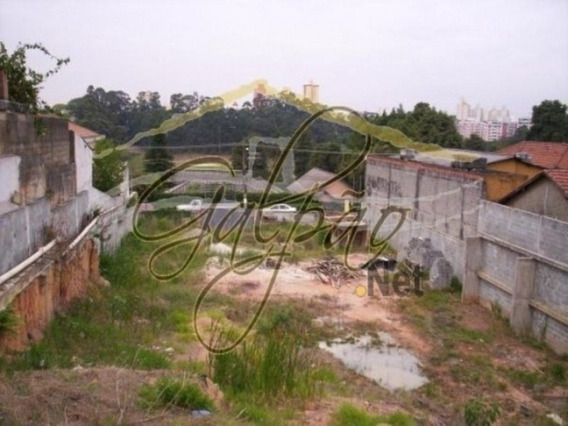 Te0049 - Alugar Terreno Em São Paulo - Te0049 - 33872130