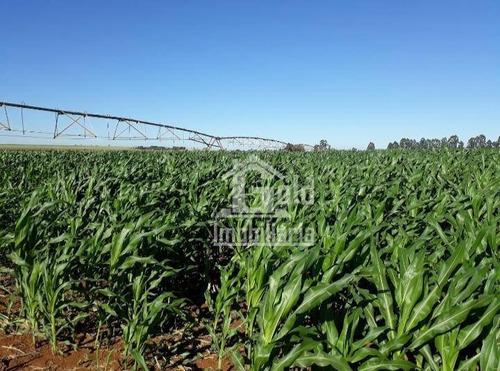 Fazenda À Venda, Com 160 Alqueires Por R$ 40.000.000 - Zona Rural - Tupaciguara/mg - Fa0138
