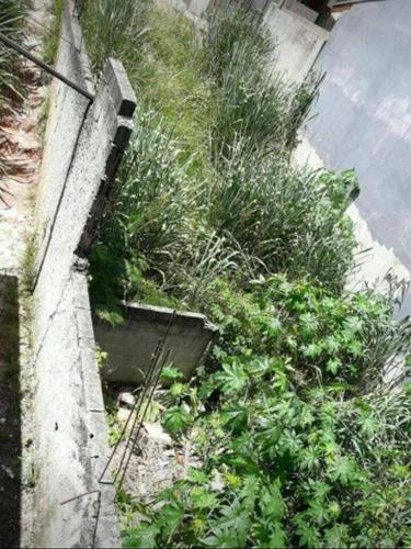 Imagem 1 de 4 de Ótimo Terreno No Parque Dos Principes Parte Baixo Conderlive - Te0188