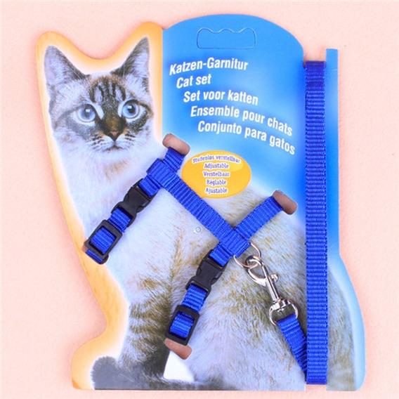 Conjunto De Guia E Peitoral Para Gatos Azul