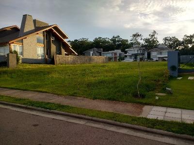 Terreno Em Vila Nova - Lp923