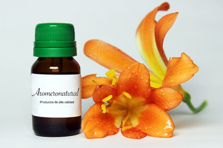 Aceite Incienso Natural X 10ml (gomo-resina) Aromaterapia