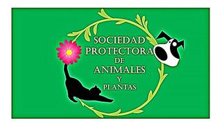 Donación Sociedad Protectora De Animales Y Plantas S.r. Mza.
