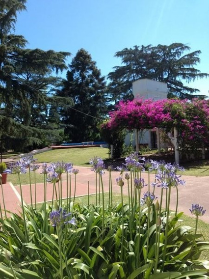 Excelente Quinta 5 Ambientes Con Piscina Y Casa Casero