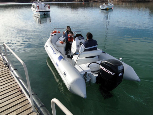 Viking De 4,6 Mts Con Mercury 40 Hp 4 Tiempos Full Full