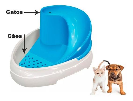 Bebedouro Cachorro Gato Fonte Tobo Fonte Automático Cães E Gatos - Mec Pet - Bivolt - Bebedouro Canino - Felino