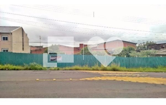 Terreno - Morada Do Vale I - Ref: 16876 - V-233463