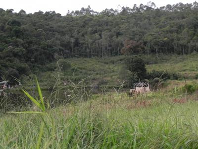 Ar Terreno 500m² Em Mairiporã - Terra Preta