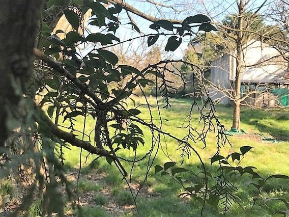 Terreno En Venta En Parque Leloir