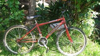 Bicicleta Piooner