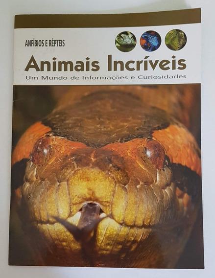 Revista Animais Incríveis Anfíbios E Répteis