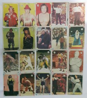 Figuritas Titanes En El Ring 1977 Lote X 87 Sin Repetir