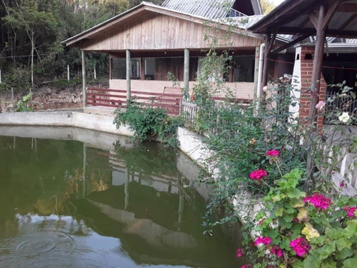 Chácara Em Mandirituba - Ch00124 - 34983072