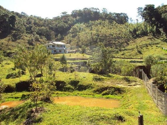 Sitio Com 9 Hectares Em São Pedro De Alcantara - 29-im339756