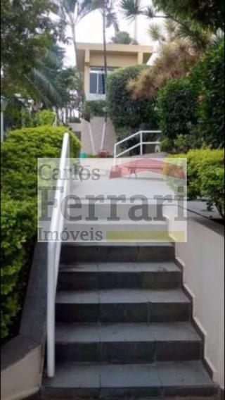 Apto 2 Dormitórios Casa Verde - Cf15110
