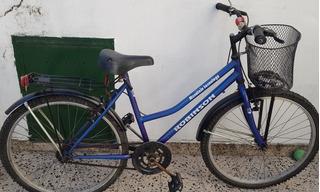 Bicicleta Rodado 26 Robinson Mountain Tecnology Adultos