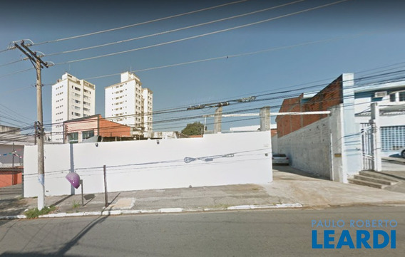 Area - Vila Mascote - Sp - 591869
