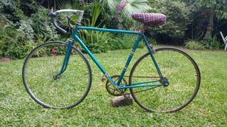 Bicicleta Bottecchia - Italiana - 1950 - Oportunidad!