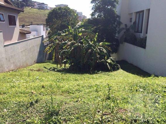 Terreno Residencial À Venda, Parque Terra Nova Ii, São Bernardo Do Campo. - Te0002