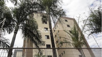 Apartamento À Venda Em Jardim Do Lago - Ap003501