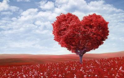 Atraer Amor, Amarres De Pareja, Abundancia, Atencion 24hs