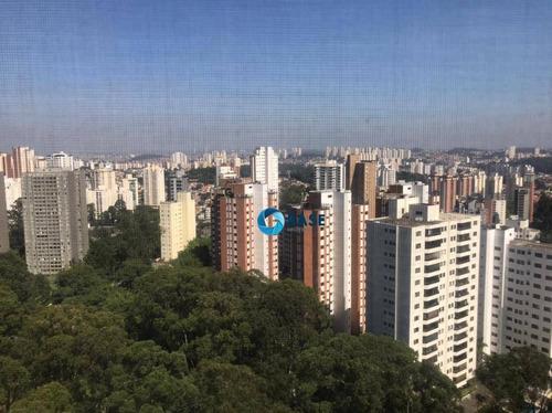Apartamento Para Alugar, 245 M² Por R$ 5.000,00/mês - Portal Do Morumbi - São Paulo/sp - Ap0292