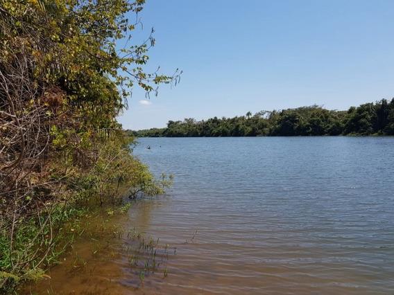 Fazenda A Venda Em Barra Do Ouro-to (pecuária) - 841