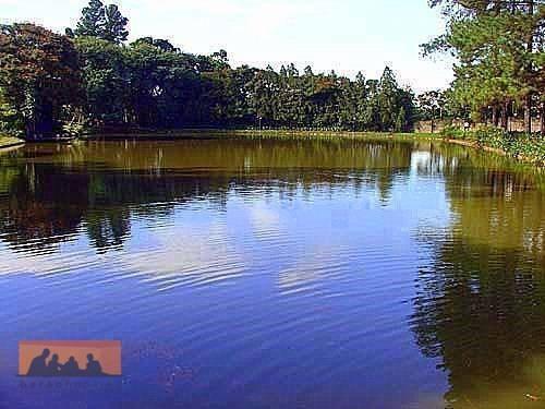 Imagem 1 de 9 de Terreno À Venda, 2192 M² Por R$ 1.160.000,00 - Condomínio Residencial Colina - Campinas/sp - Te0037