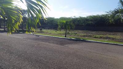 Solar De 363 Mts En Los Samanes Residences Wps-16