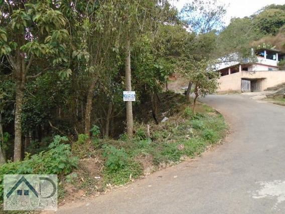 Terreno Para Venda Em Nova Friburgo, Campo Do Coelho - 143_2-793578