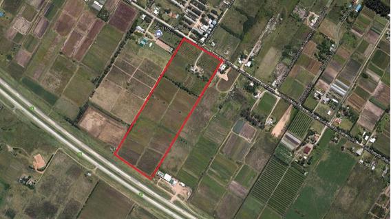 Campo Ruta 1 Km 16 Gran Inversión Posible Uso Logístico Uy