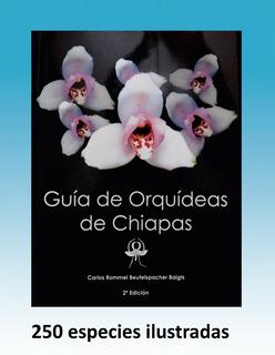 Guia De Orquídeas De Chiapas