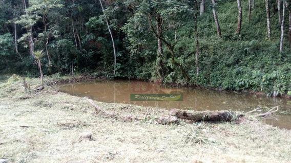 Terreno À Venda, 14500 M² Por R$ 650.000 - Sertãozinho - Santo Antônio Do Pinhal/sp - Te0863