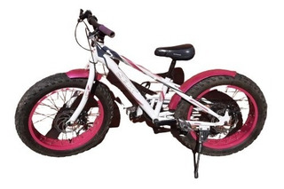 Bicicleta Fat Bike Rodado 20 Para Nena.