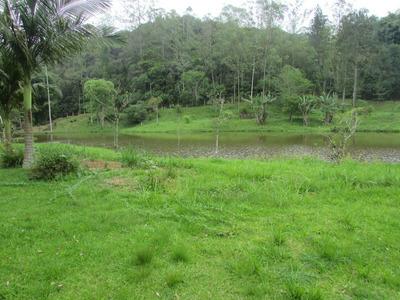 Sitio Rico Em Água/sede No Alto/caseiro/ac/auto/ Ref: 04730