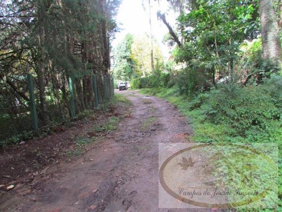 Terreno Para Venda Em Campos Do Jordão, Alto Da Vila Inglesa - 03