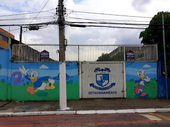 Terreno Para Alugar Por R$ 3.719,00/mês - Parque Edu Chaves - São Paulo/sp - Te0016