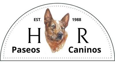 Paseador De Perros Y Guardería Canina