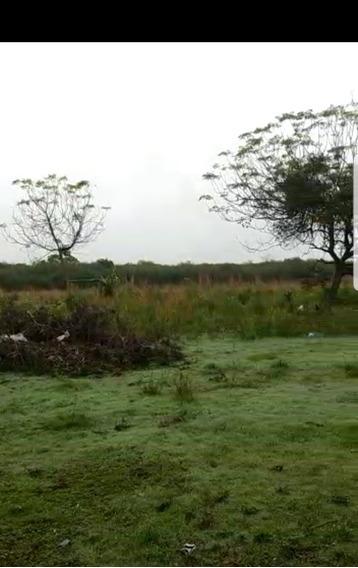 Campo Agrícola Laguna Blanca Formosa. Oportunidad Rebajado