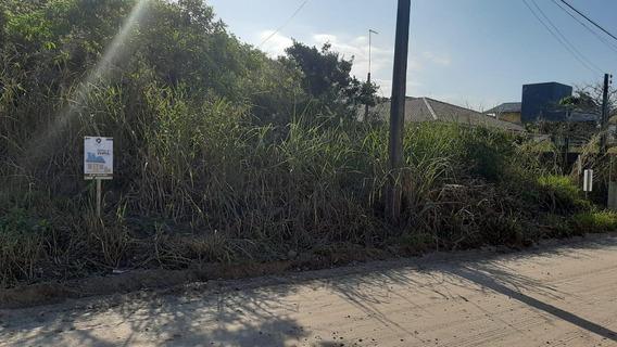 Terreno Em Cambijú, Itapoá/sc De 0m² À Venda Por R$ 230.000,00 - Te619596