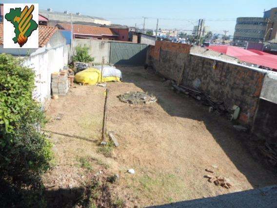 Terreno, Locação,campinas - Te00014 - 4459021