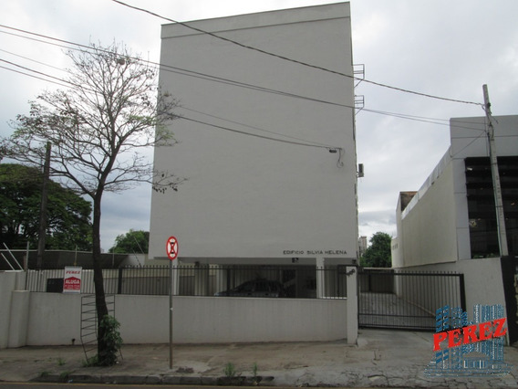 Apartamentos Para Alugar - 00447.003