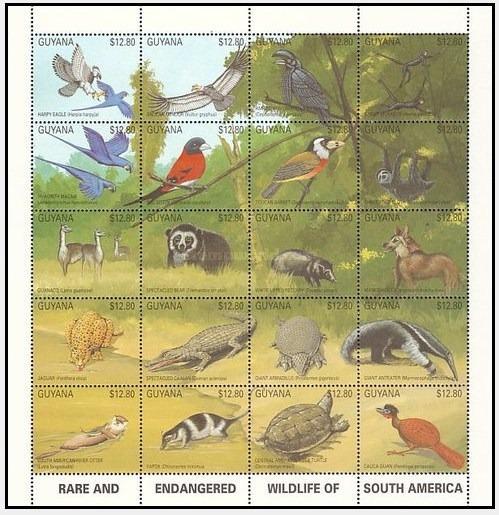 Dams Guiana Fauna América Ameaçada Animais Selvagens