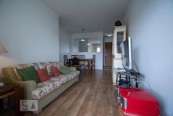 Apartamento Para Aluguel - Santana, 3 Quartos, 65 - 893022843