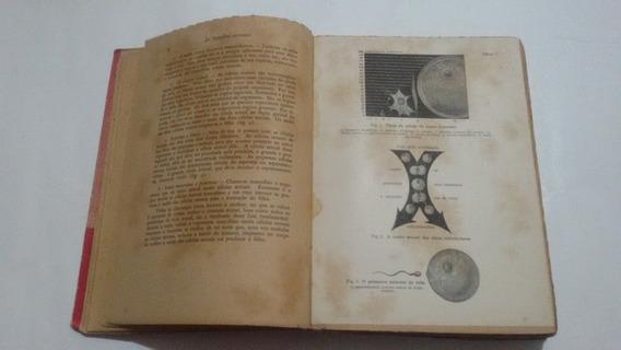 Antigo Livro A Nossa Vida Sexual Ediçao Ilustrada