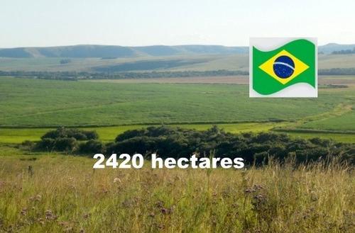 Fazenda Com 2420 Hectares Em Rosário Do Sul - Rs