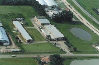 Área Comercial À Venda, Distrito Industrial, Arroio Dos Ratos. - Ar0013