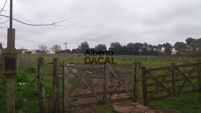 Terreno - Arturo Segui