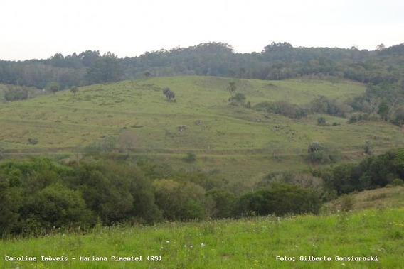 Área Rural Para Venda Em Mariana Pimentel, Estrada Do Pelami - Mariana Pimentel - Rs - 1174_1-1119257